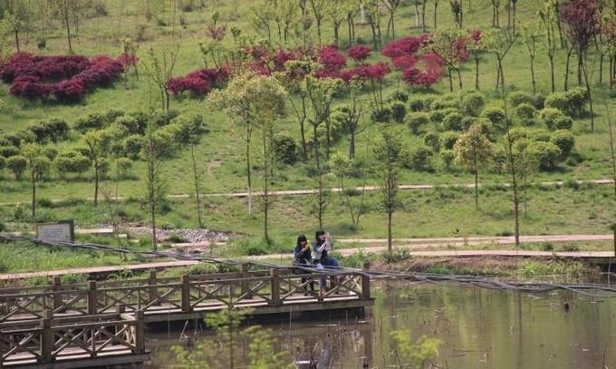 乐至县坚持规划引领  构建生态宜居城市