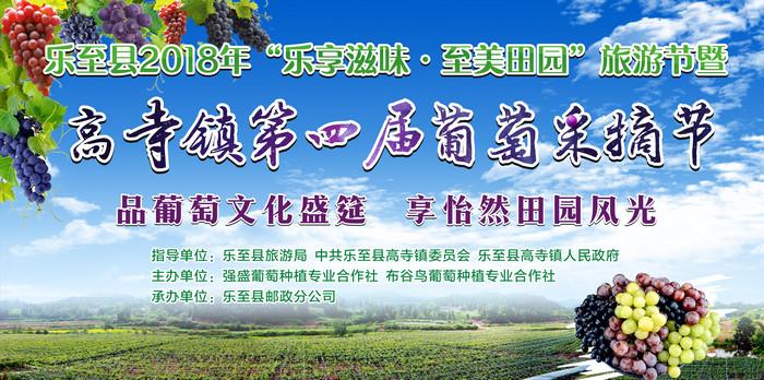 高寺镇葡萄采摘节:品葡萄文化盛筵 享怡然田园风光